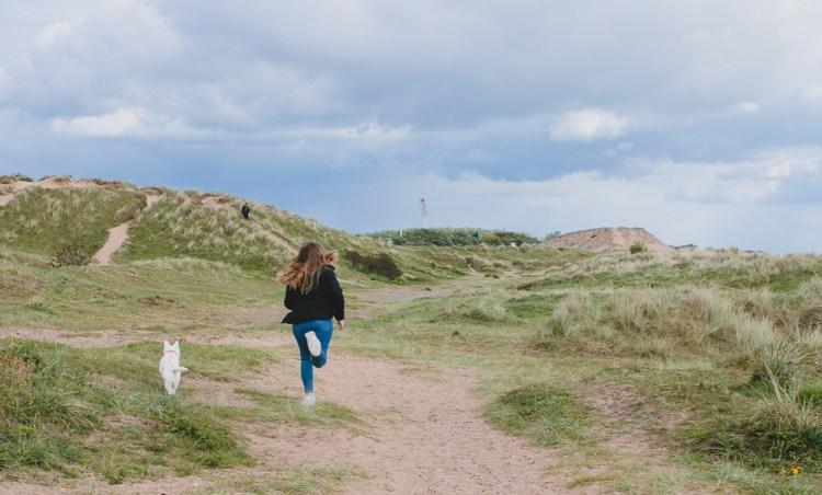 dog walks beach lytham