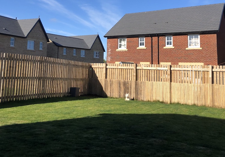 new build garden fence