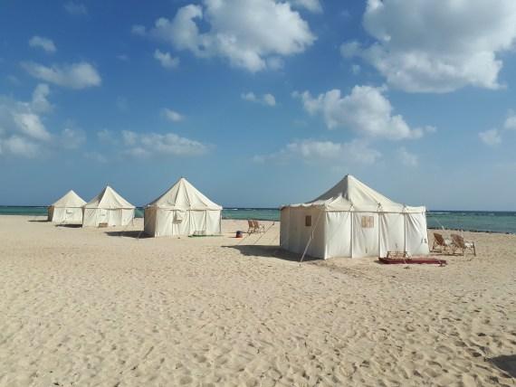 Royal Tents at Marsa Shagra by Christina Wichert