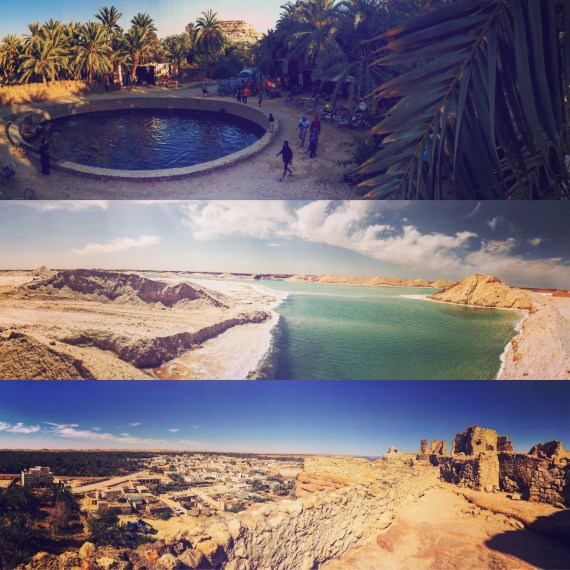 Snippets of Egypt's Siwa Oasis