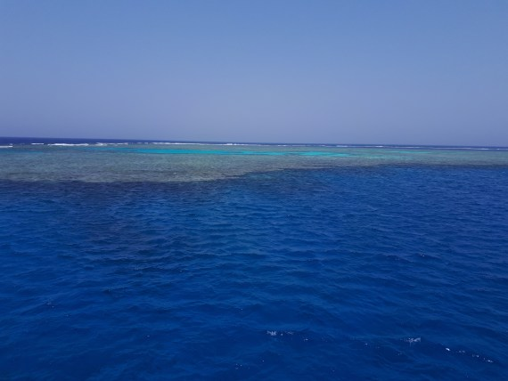 How many different shades of blue can there be in one place? Unreal! By Hesham Mohammad