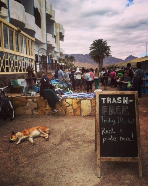 Snippets of Dahab's Friday Market's atmosphere