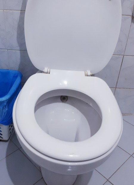 Toilet with a shatafa