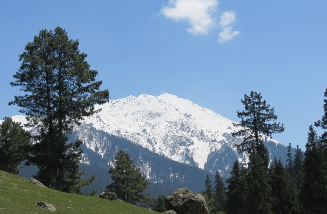 11 Things to do in Kashmir