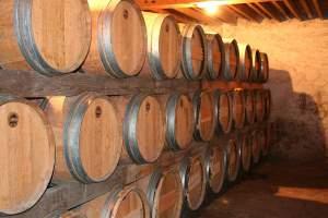 experts viticoles
