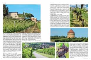 Wine-Lux-residence-press-release_Page_3