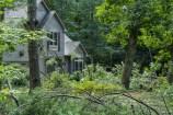 Tornado Damage Street