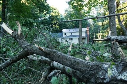 Tornado Damage Backyard