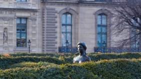 Face in the Garden