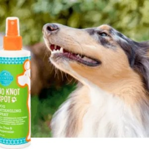 TEA TREE PEPPERMINT SCENTSY DOG DETANGLING SPRAY