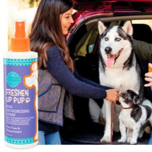 TEA TREE PEPPERMINT DOG DEODERISING SPRAY - SCENTSY