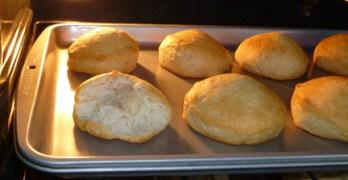 Wordless Wednesday – The Biscuit Bandit