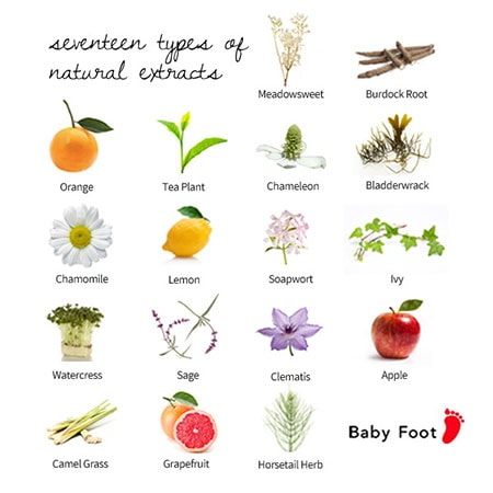 Baby Foot Ingredients