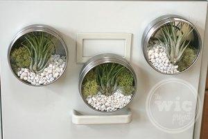 Darby Smart Mini Terrarium Tin