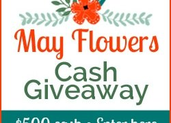 Win $500 in the $500 May Flowers Cash Giveaway