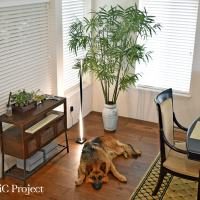 How to Add Light to a Room with Brightech LED Lighting