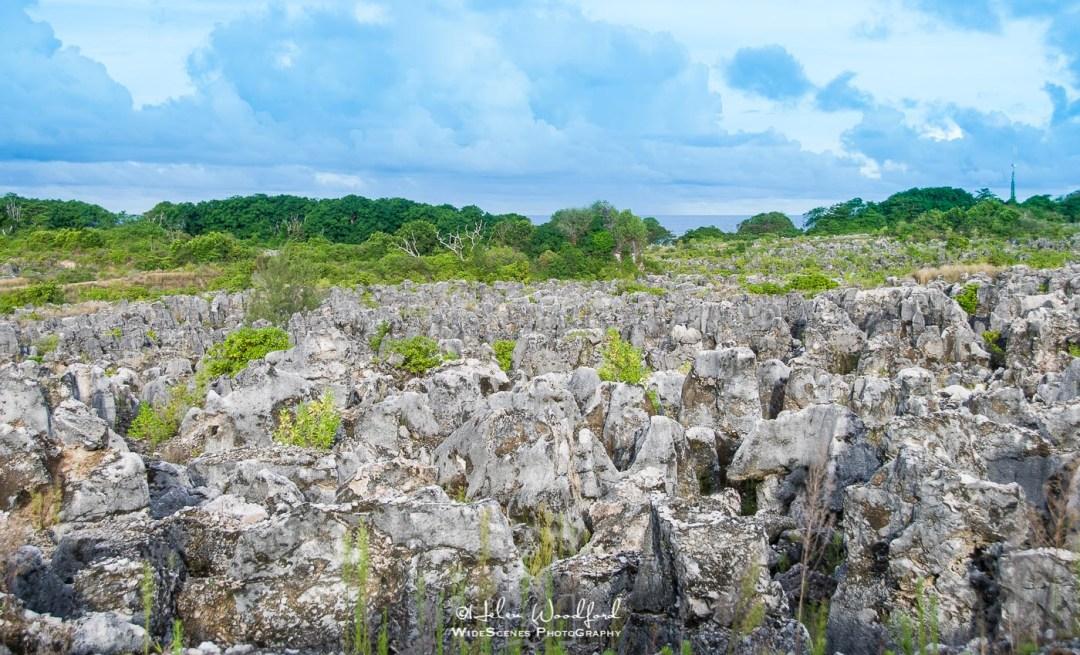 Phosphate mining has created a lunar landscape on Nauru