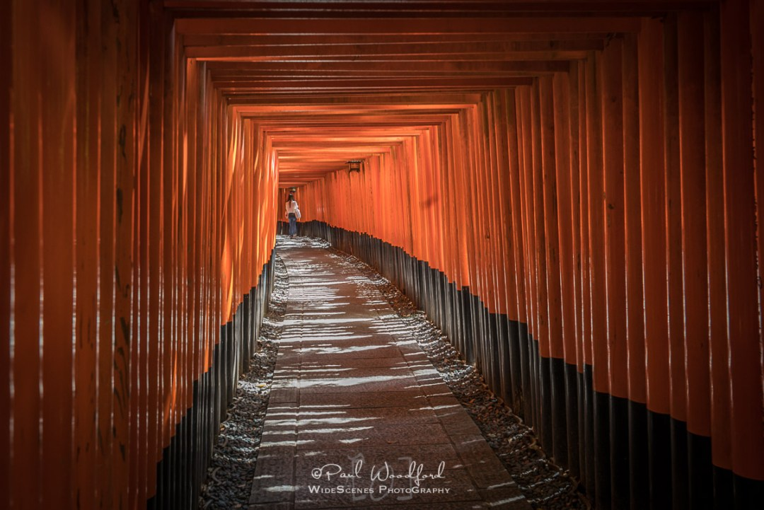 Fushimi Inari-taisha Shrine, Kyoto