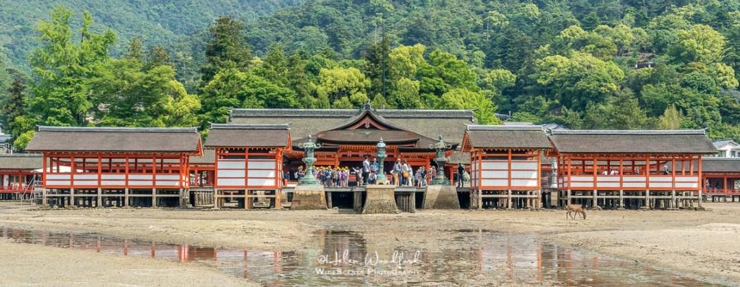 Itsukushima Shrine, Miyajima Island