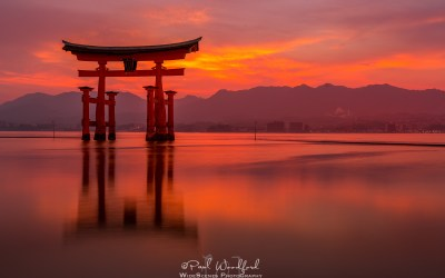 Flights to Japan from $438 Return. Bags and meals included