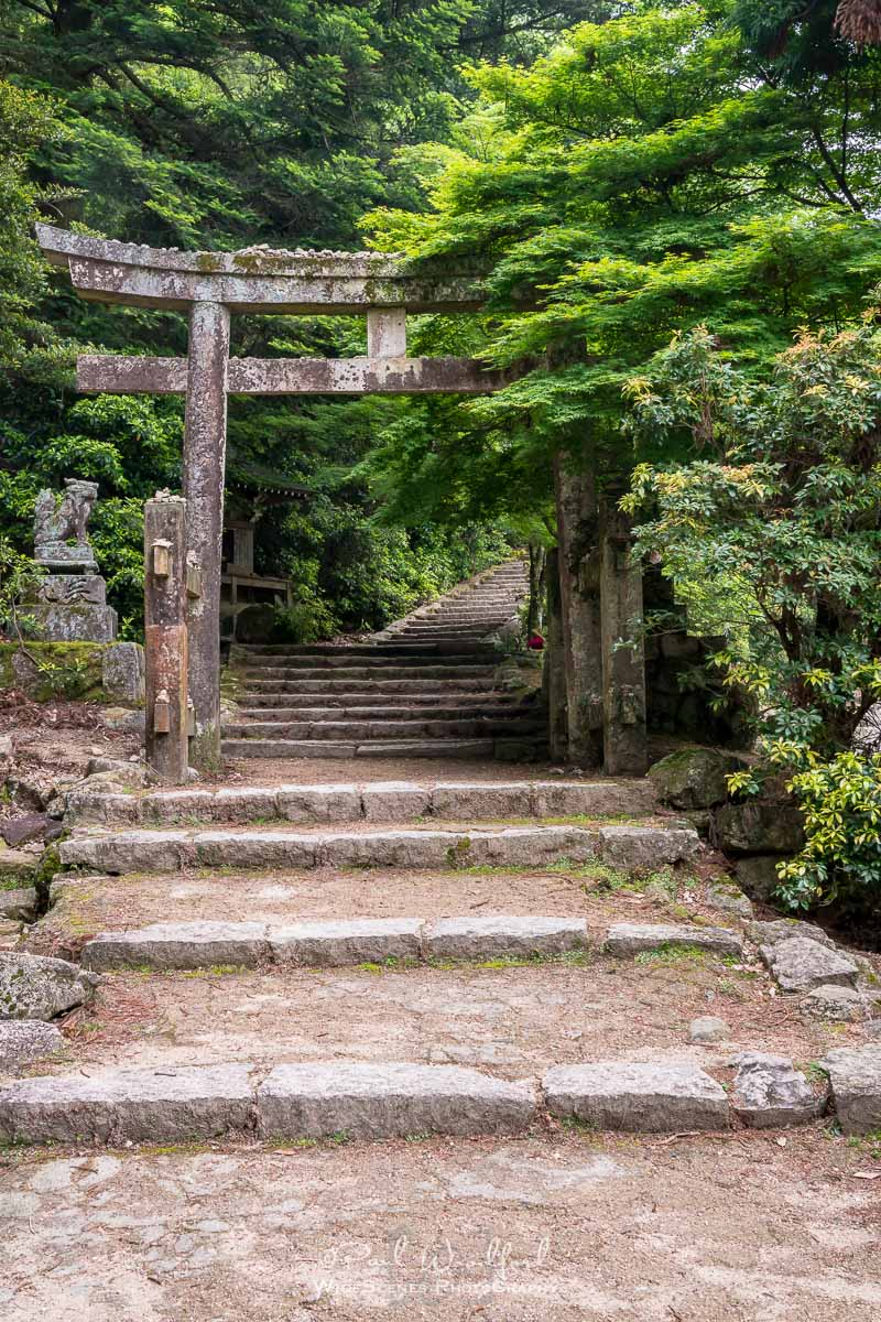 Walking Trail, Miyajima Island