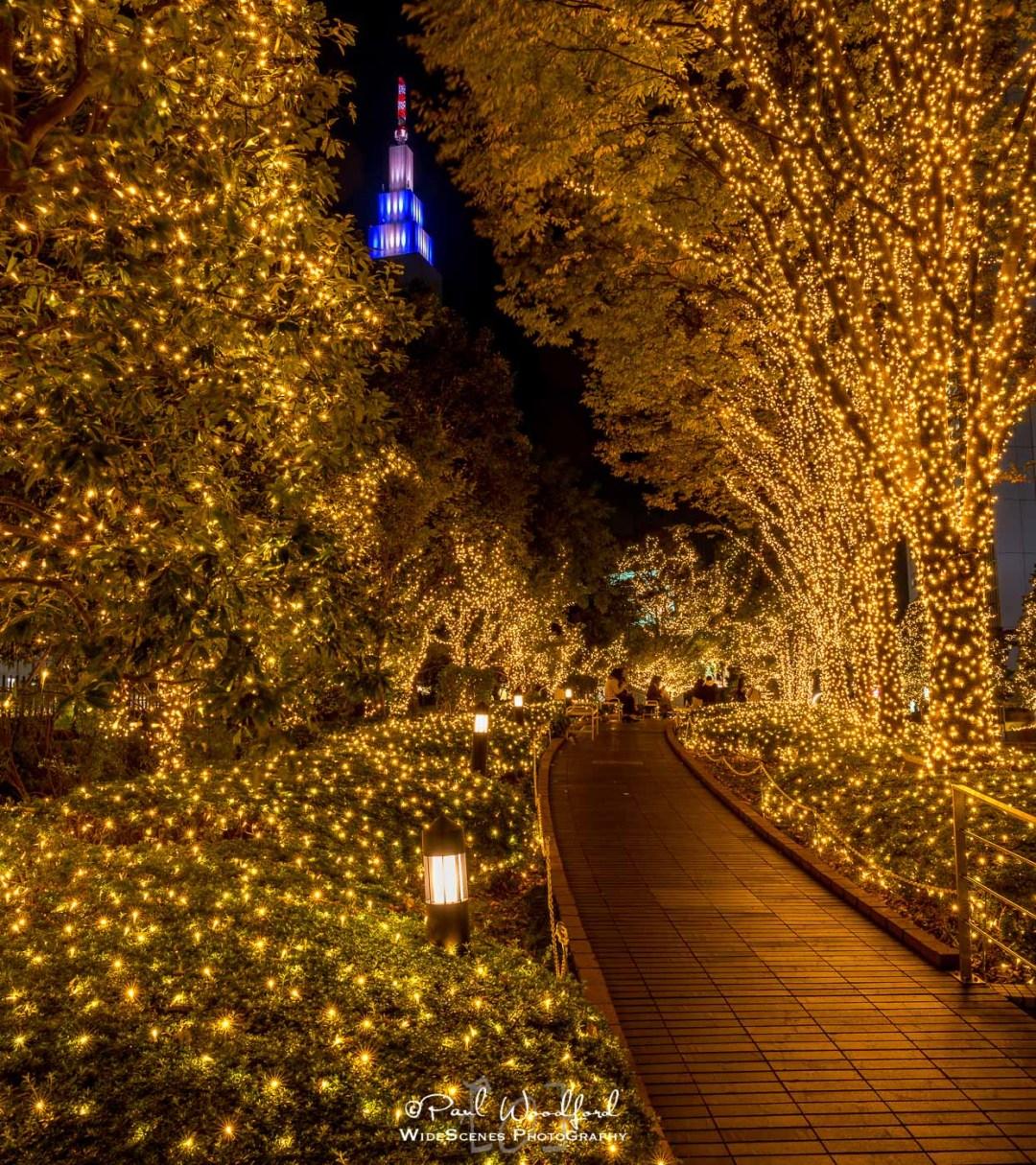 Shinjuku Terrace City Illuminations, Tokyo