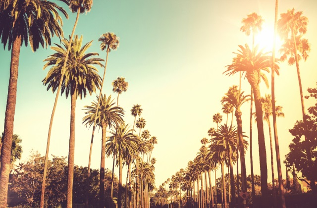 Fly to Los Angeles from $757 Return on Air New Zealand!