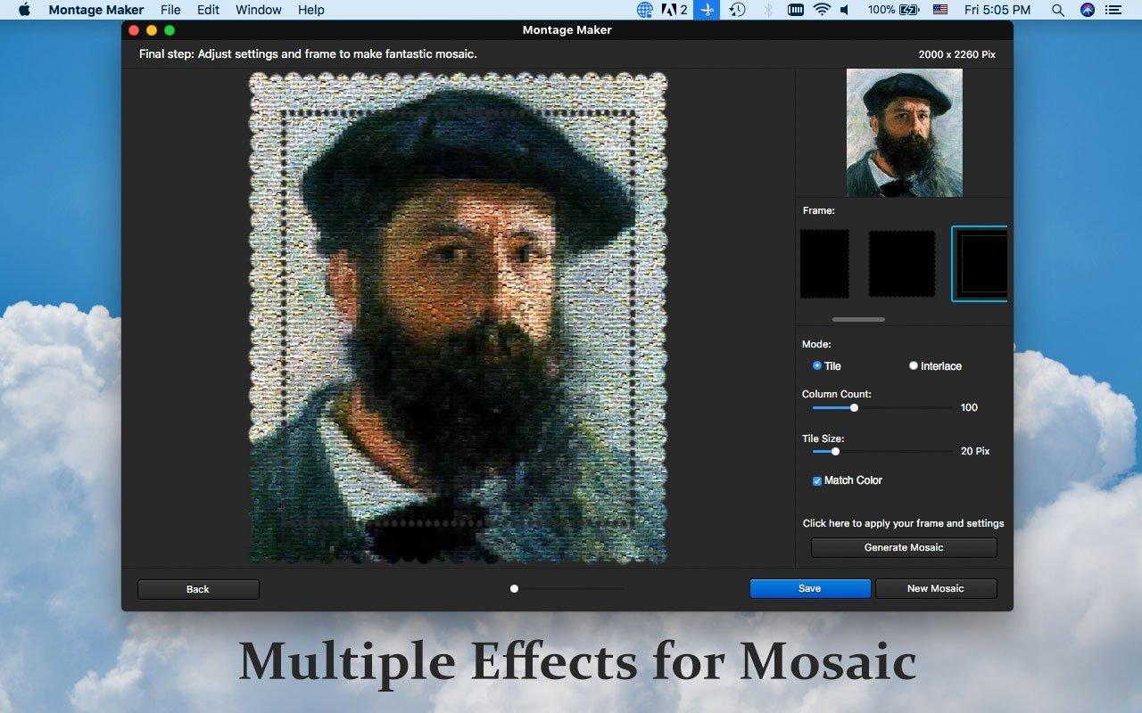 WidsMob Montage 1.18 Mac 破解版 - 优秀的蒙太奇图片制作应用