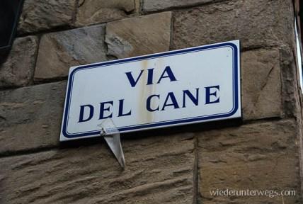 Bologna Juni 2015 (2 von 25)