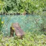 Runterkommen an der Kolpa: Geheimtipp Bela Krajina