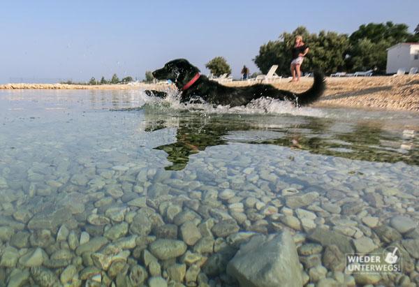 kolpa-kroatien-pag-camping-roz_sept2016_web-20-von-88