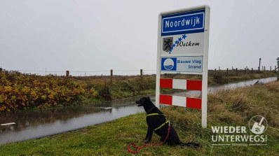 Noordwijk_web (92 von 596)