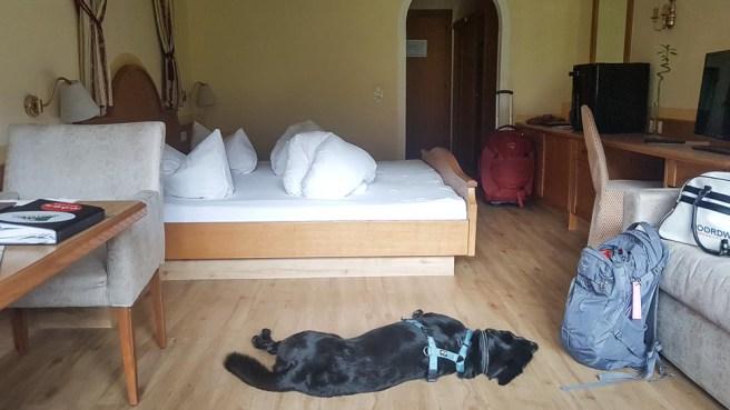 Urlaub mit Hund Österreich Zillertal Hotel Magdalena web (46 von 328)