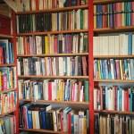 Leseliste statt Packliste: Buchtipps persönlich, Teil 1