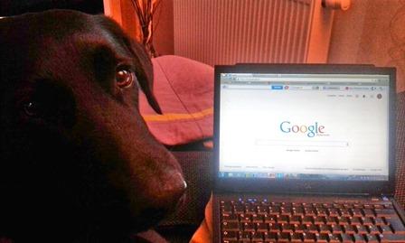 coffee und google