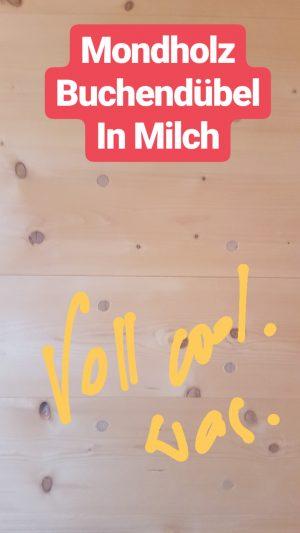 molzbachhof insta2018 (1)