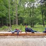 Top Ausflug: Frischlinge und Frischluft im Naturpark Sparbach