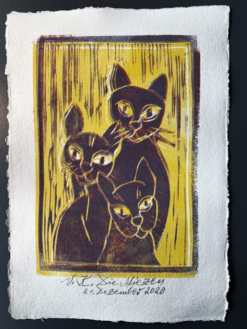 Katzen-Trio