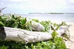 Malaekahana State Park