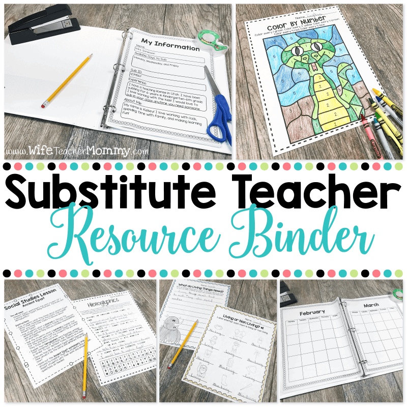 The substitute teacher resource binder is perfect for substitutes in an elementary setting! A full day of plans for K-6 is included along with a calendar, info forms, punch cards and more!