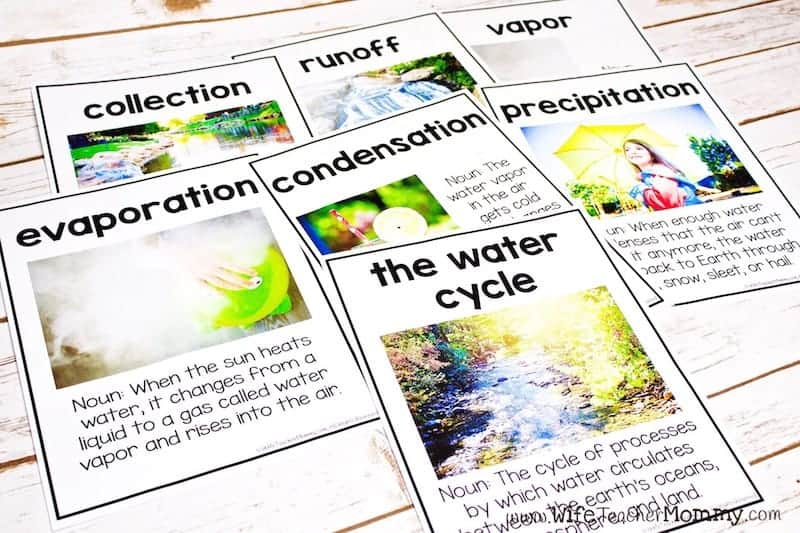 These water cycle posters are a great way to teach your students about the water cycle! This is part of my integrated thematic unit.