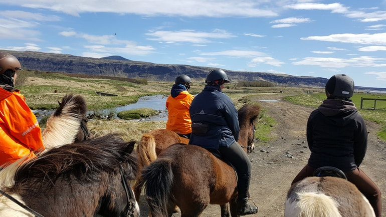 heritage horse riding tour in Iceland