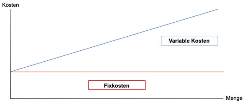 Fixkostenmanagement und Fixkostensteuerung