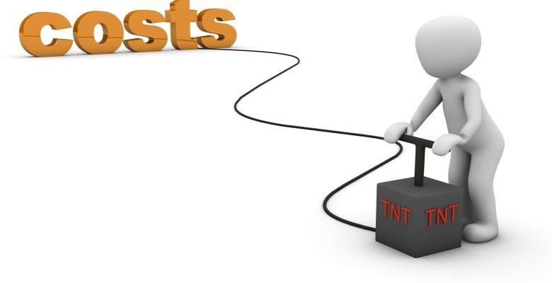 Kostenmanagement und Kostensteuerung