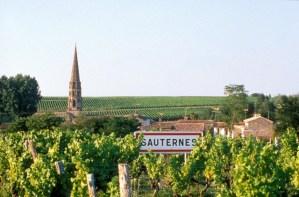 2008-01 Sauternes FI