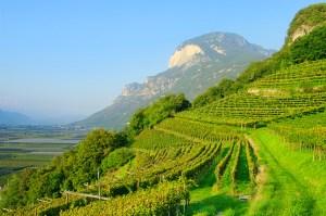 2011-10 Alto Adige FI