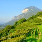 15-10-2011 : Alto Adige