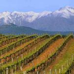 12-05-2012 : Corsica