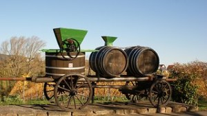 wijnbouwZuid-Afrika