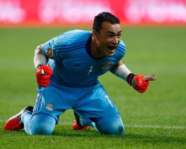 Essam El-Hadary wiki, Age, Affairs, Net worth, club, position and More